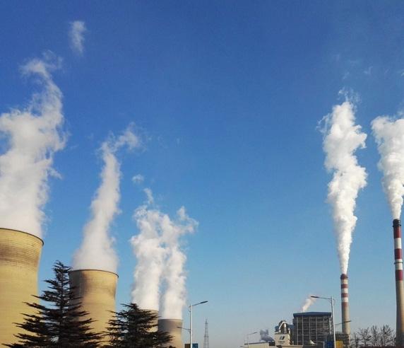发电厂生物质颗粒燃料
